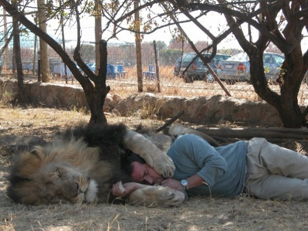 Фотосессия со львами