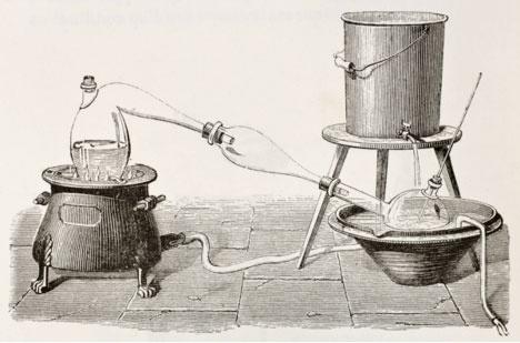 получение растительного масла