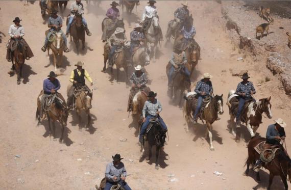Военизированные рейды против фермеров в Техасе