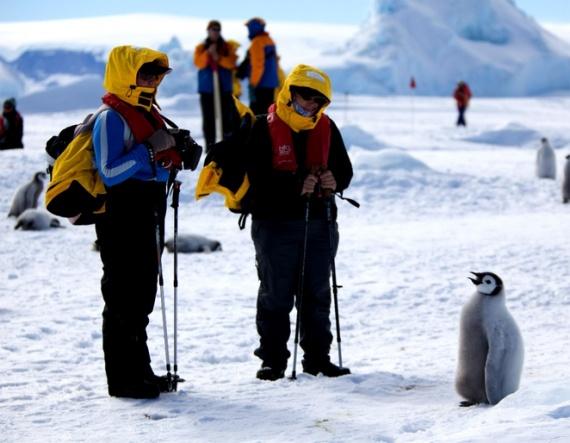 Antarctica pierde aproximativ 160 de miliarde de tone de gheata în fiecare an …