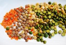 продукты, которые  должны входить в меню вегетарианцев