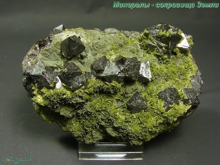 Минералы - сокровища земли