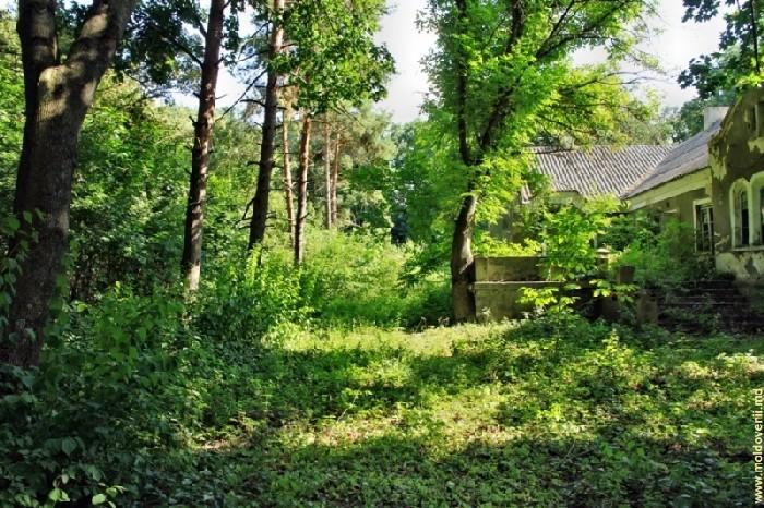Парк и поместье Хинкэуць