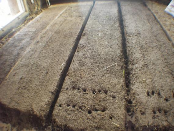 основной слой глиняного пола