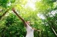 Как тишина влияет на душевное спокойствие