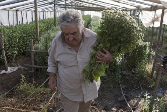 Хосе Мухика. Самый бедный президент