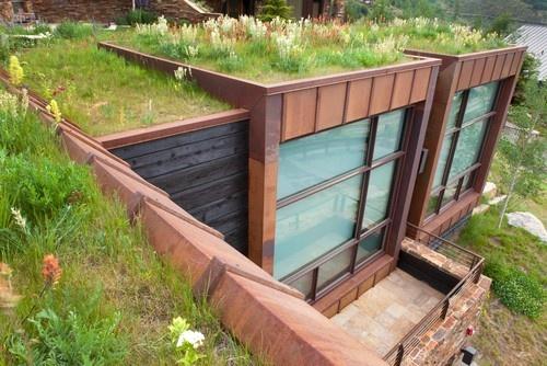 6 мифов о зеленых крышах (+Фото)