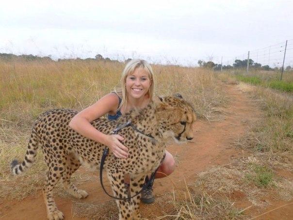 девочка дружит с гепардом