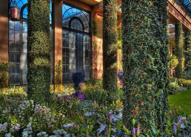 садовый турист