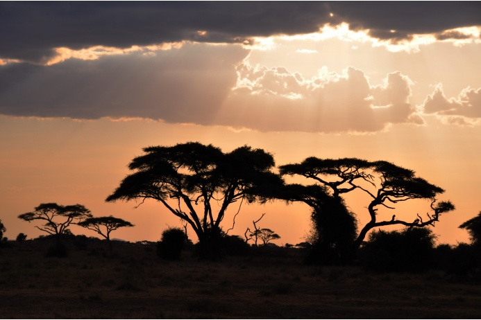 Жизнь в Африке