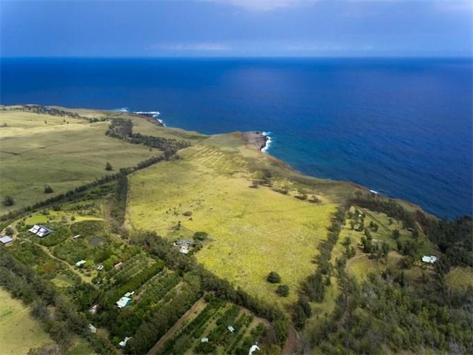 Органическая ферма на Гавайах – островной рай (Видео)