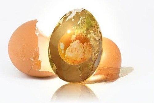 Совет дня: собирайте яичную скорлупу для дачи