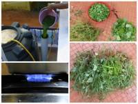 Биогаз из сорняков за 10 шагов