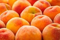 Россельхознадзор намерен разрешить поставки фруктов из Молдавии