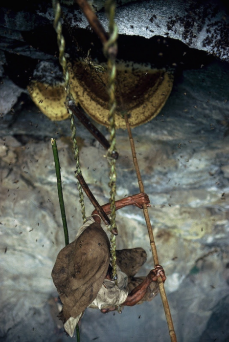 Охотники на мед из Непала