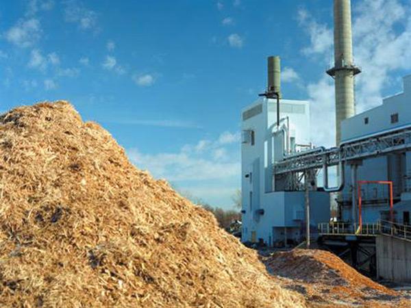 Некоторые здания юга молдовы будут оснащены системой отопления на биомассе