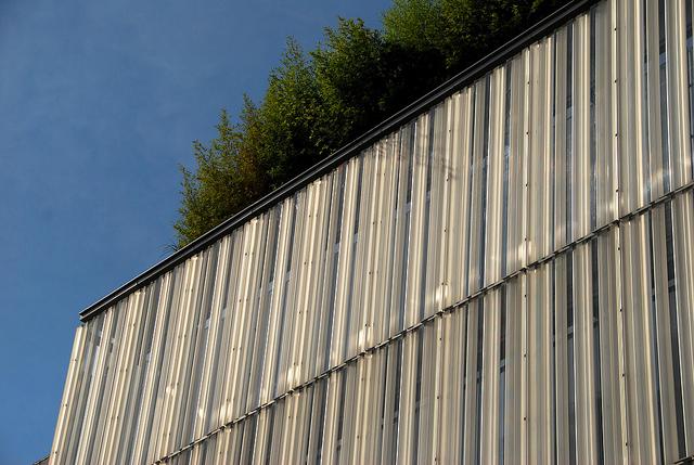 Созерцание зеленых крыш помогает улучшить концентрацию