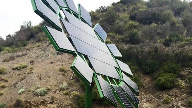 Джеймс Кэмерон дарит гигантские солнечные подсолнухи для школы в МалибуДжеймс Кэмерон дарит гигантские солнечные подсолнухи для школы в Малибу