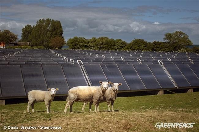 Топ-5 самых масштабных и красивых солнечных проектов в мире