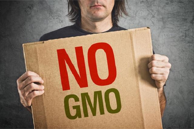 Германия полностью запретила ГМО