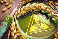 Молдову убьют не кризисы, а продукты с ГМО, которые к нам везут со всего мира