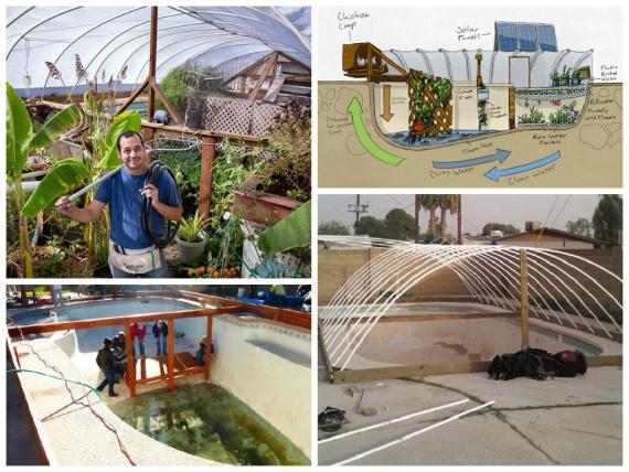 Как из старого бассейна сделать самодостаточную органическу ферму