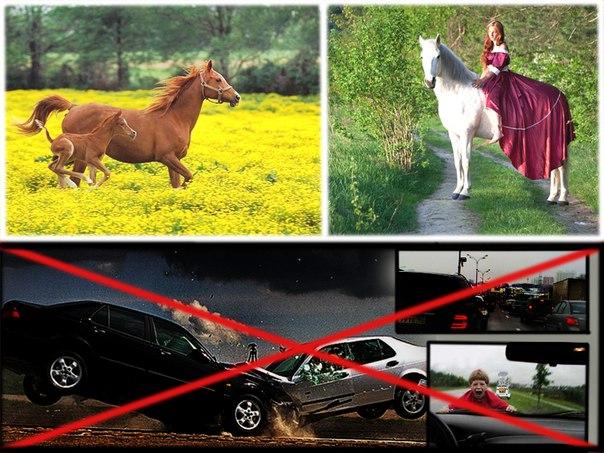 Преимущества лошади перед автомобилем