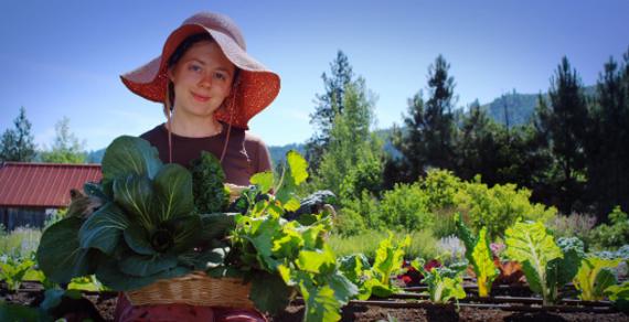 10 заповедей огородника от Катерины Дельво