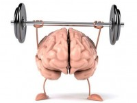 Упражнения, которые поддерживают работу мозга