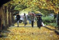 5 главных советов, как сохранить свое здоровье осенью