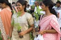 Индия высадит два миллиарда деревьев благодаря молодым безработным