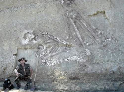 Найден скелет великана. Правда или подделка?