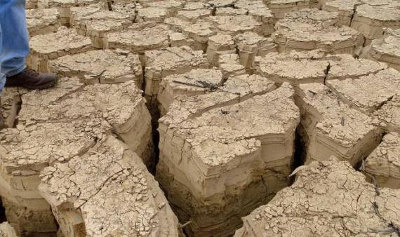 Разрушение почвы: 1/3 наших самых плодородных земель исчезло за последние 40 лет