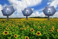 Проект «Подсолнух» от IBM – энергия 2000 звезд в одном устройстве