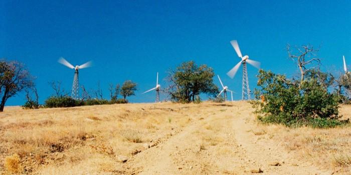 Зеленый Крым: солнечные электростанции, сортировка мусора и другие экопроекты полуострова