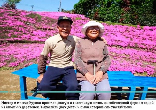 Любящий муж за 2 года посадил тысячи цветов для своей слепой жены, чтобы она наслаждалась их запахом