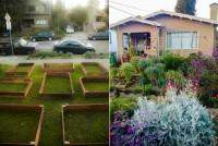 Как превратить газон в самодостаточный огород за 60 дней