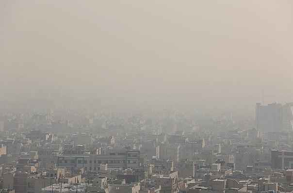 Ежегодно из-за загрязнения воздуха умирает пять миллионов человек
