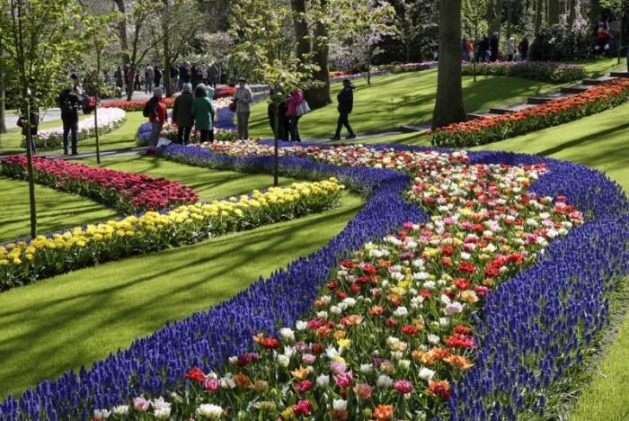 Parcul Keukenhof, cel mai impresionant paradis floral din lume