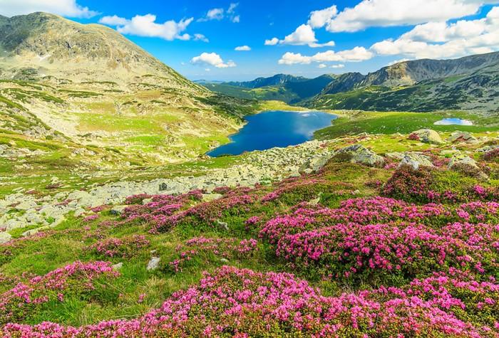 50 причин посетить Румынию. Часть 1