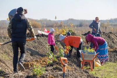 Как на Кубани выращивают здоровые продукты