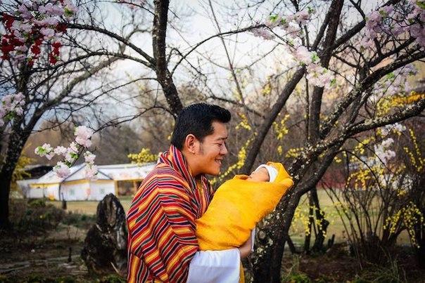 Королевство Бутан высадило 108 тысяч деревьев в честь рождения принца