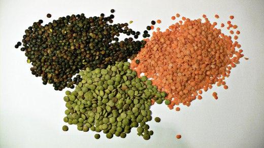Чечевица – выращивание и полезные свойства