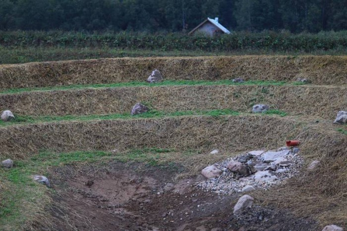 Пермакультура Зеппа Хольцера — в 10 раз эффективнее традиционного сельского хозяйства
