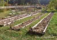 Курдюмов про умный огород Замяткина