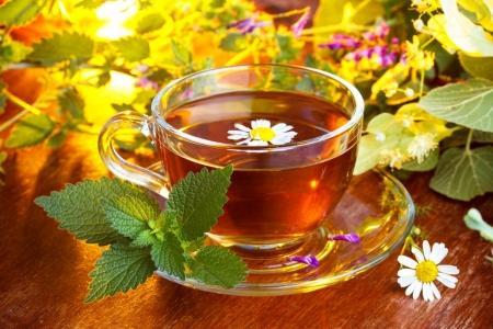 Cultura consumului ceaiului din ierburi are rădăcini în trecutul îndepărtat. În istoria farmaceutică a majorității dintre țări există experiența tratamentului cu ierburi a diferitor maladii.