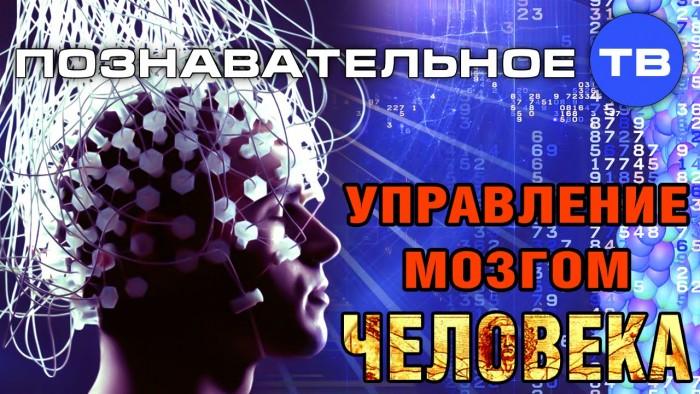 Управление мозгом человека. Познавательное ТВ, Сергей Савельев