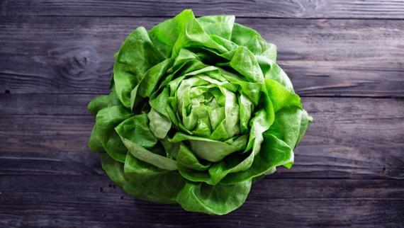 7 овощей для быстрого урожая этим летом