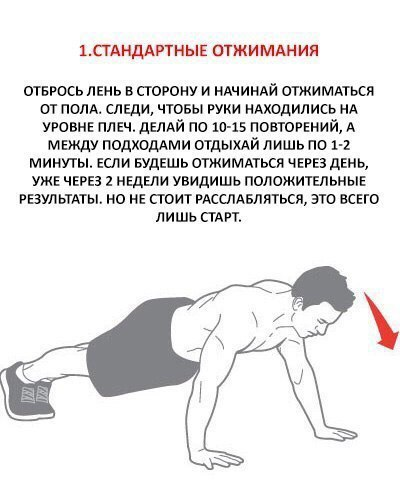Качаем грудь без гантелей и штанги: 6 самых эффективных упражнений