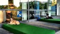 Парковка для собак в магазине IKEA, в городе Кельн, Германия